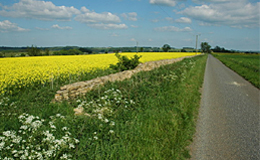 cleeve-hill-road