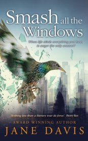 Smash All the Windows by Jane Davis